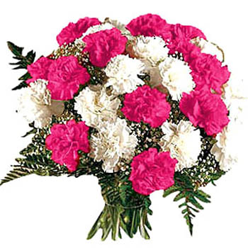 Bouquet Of Carnations