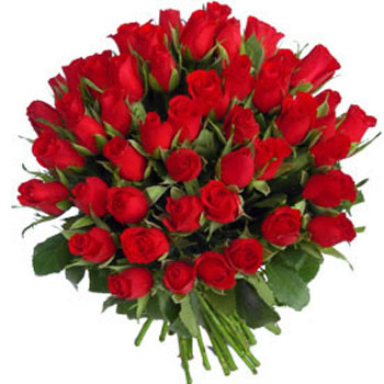Fifty Red Roses Bouquet