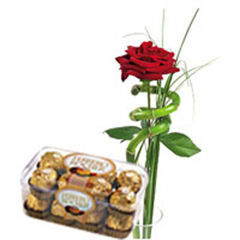 Single Red Rose with Chocolates