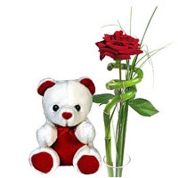 Single Red Rose & Teddy