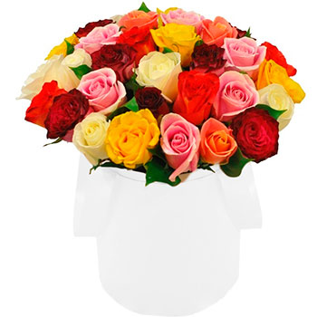 Mixed Roses in a Round White Box