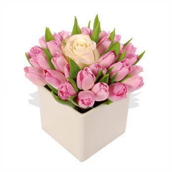 Fresh Pink Tulips & White Rose