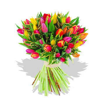 Two Dozen Assorted Tulips in a Bouquet