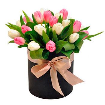 Arrangement Tulips in a Round Box