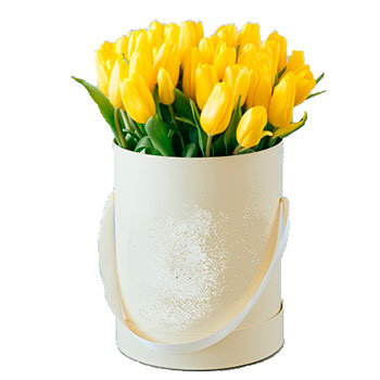 Yellow Tulips in a Round Box