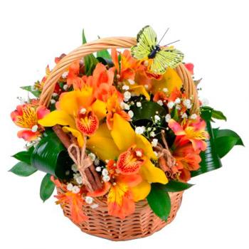 Basket Charming
