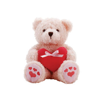 Small Teddy Bear Toy