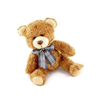 Medium Teddy Bear Toy