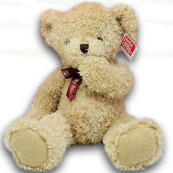 Big Teddy Bear Toy