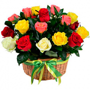 Basket multicolored roses