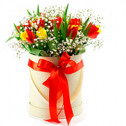 Mixed Tulips in a Round White Box