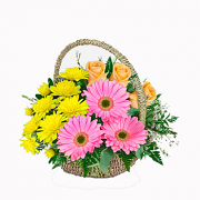 Bouquet Magic Morning