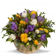 Basket Of Freesia