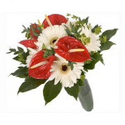 Bouquet Of Gerberas & Anthurium