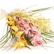 Orchid Delight Bouquet