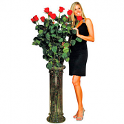 Giant Roses - The Ultimate Rose Gift