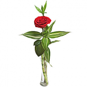 Single Red Rose and greens bambo