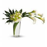 Calla & Orchid arrangement