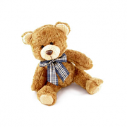Medium Teddy Bear Toy